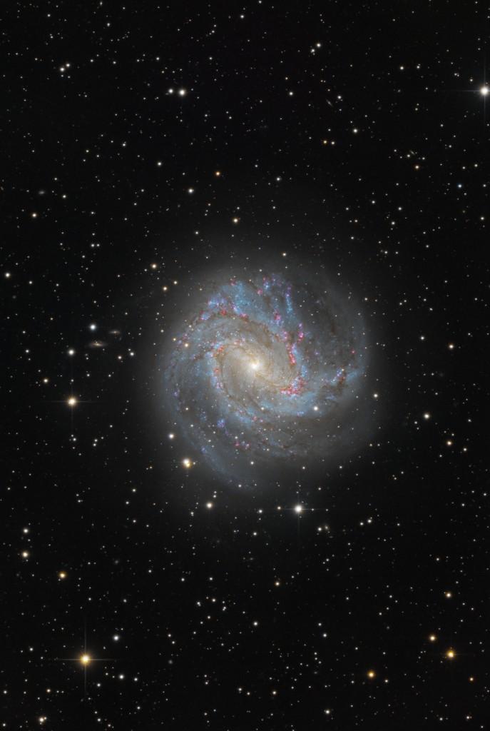 Die Spiralgalaxie Messier 83