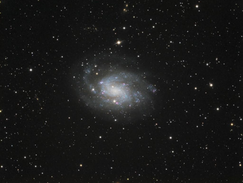 Die Spiralgalaxie NGC300