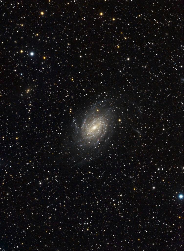 Die Pavo-Galaxie (NGC6744)